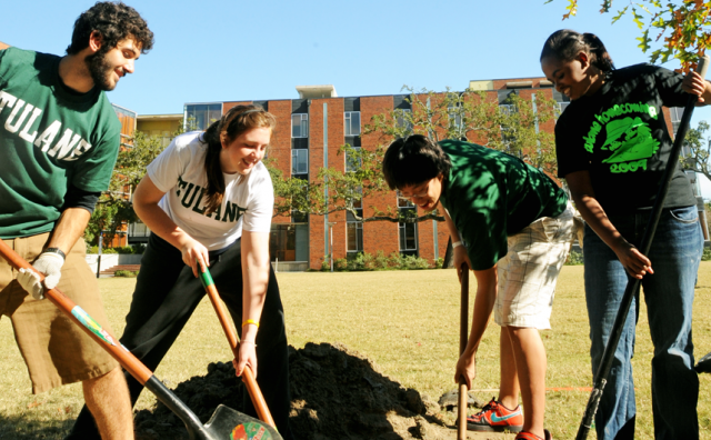 Get Engaged students plant trees on Bruff Quad