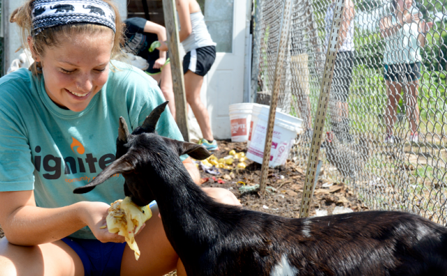 changemaker student feeding an animal on a school trip